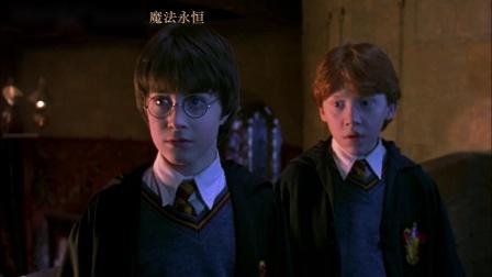 4K修复3D版《哈利·波特与魔法石》中国版定档预告