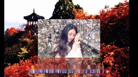 音画欣赏-歌曲:秋天的思念