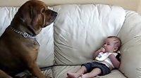 【时光小可爱】有我在,谁也伤不了宝宝!