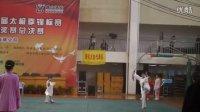 湖南省第四届太极拳锦标赛游龙队参加四十二式太极剑比赛现场(二)