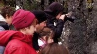 新西兰南岛米佛峡湾深度探索巡游