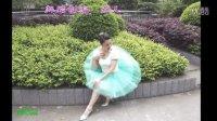 兰燕稻都广场舞:春天的芭蕾(正反面及口令)编舞:燕儿