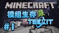 【石头】我的世界Minecraft|Tekkit模组生存 1:HIM的遗产