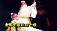 豫剧—《清风亭上》—老婆子撞柱血飞溅—雾里看晨演唱