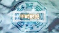 《中国相学·手相》03.手的触感