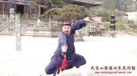 武当功夫—武当行剑教学(田理阳道长演示)