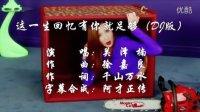 【MV】关泽楠  这一生回忆有你就足够(DJ版)双字幕 超清