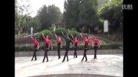 野牡丹健身队广场舞--草原多么美