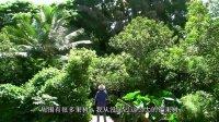 【朴自然1.3】(译)朴门伊甸园-Geofflawton一个天堂般的朴门农场