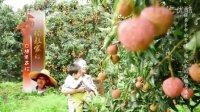 【荔枝】杨叔家的白糖罂荔枝 |《握在手中的丰收》[理疗达人]