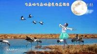 兰燕稻都广场舞:北方飞来的黑颈鹤