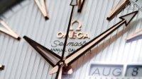 欧米茄海马系列Aqua Terra年历腕表