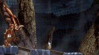 特斯拉学徒 Sissy解说 飞翔的大鸟真的是大鸟