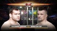 【玉帝之杖】UFC-15年:战警米尔科VS贡扎加二番战复仇成功