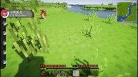 【奇怪君-E家】 Minecraft 我的世界 神奇宝贝口袋妖怪模组生存ep.1 我的世界实况