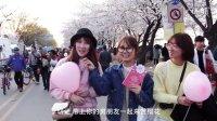 去首尔汝矣岛 来一场浪漫樱花之旅 11