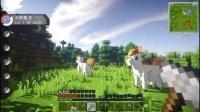 【奇怪君-E家】 Minecraft 我的世界 神奇宝贝口袋妖怪模组生存ep.4 我的世界实况