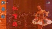 海河之醉--狂舞的红嘴鸥