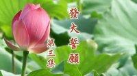 【二零一五年发大誓愿03】字幕版
