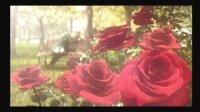 【糖糖解说】残酷而又美丽的黑色童话-蔷薇守则(一)上集