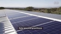 豪根道在肯尼亚的太阳能温室项目 Hoogendoorn Solar powered greenhouse project in Kenya