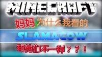 ★我的世界动画★Minecraft动画——妈妈!为什么我看的Slamacow和他们不一样??!《Silverfish Encounter遭遇蠹虫》