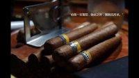 雪茄Cigar入门 介绍 鉴别 保存 开孔 点火 品吸 全接触