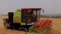 闫良2015年小麦开收