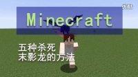 我的世界《明月庄主》五种杀死末影龙的方法Minecraft