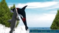 PC大白鲨JAWS  大白鲨VS虎鲸