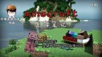 LMT【我的世界】萌宠与坐骑—minecraft生存笔记4