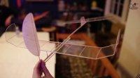 Flite Test - F1D Indoor Free Flight