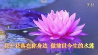 佛教音乐 佛教歌曲 《愿做菩萨那朵莲》 hao金格格视频(28)