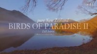 新西兰南岛7月dji航拍 Birds of paradise 2(pure New Zealand)