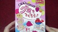 【喵博搬运】【日本食玩-可食】动物软糖(っ´Ι`)っ