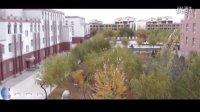 【秀色可餐】托克托县第一中学校园深秋美景
