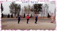 曲阜舞艺广场舞28 落花