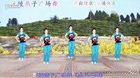 沅陵燕子广场舞《全民共舞》(正、背面演示)