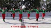 全民广场舞遥望西藏 原创教学版 完整版 字幕版正.背面[瑞昌市火凤凰舞蹈队]