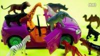 野生动物世界 3D动物模型 认识动物 英语学习 动物王国 赛车 北美玩具