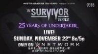 WWE强者生存大赛2015年度宣传片