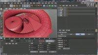 C4D R15快速入门视频教程 03 基本几何体的属性