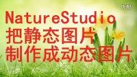让人着急视频制作专辑第三集:NatureStudio把静态图片制作成动态图片