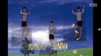 广场舞瑞昌荣荣普通Disco