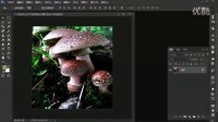 PS cc2015版全解视频教程 32 图像大小和新建图层
