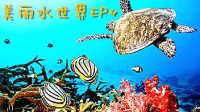 【虾米解说】美丽水世界subnauticaEP4,天黑请闭眼——水下之旅
