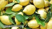 《意大利啊》——阿马尔菲柠檬  海岸线上的珍宝