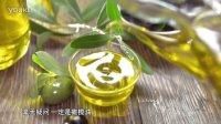 《意大利啊》——液态黄金  特级初榨橄榄油
