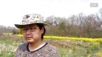 """野外生存野菜识别:爽歪歪的车前草化身为""""小嫂子""""!"""