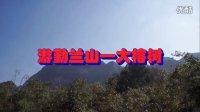 水灵灵视频广场 - 游勤兰山大榕树